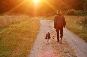dog owner walking